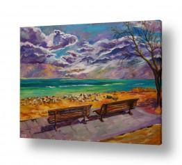 ציורים שמיים | חורף בים המלח