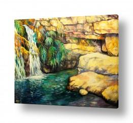 ציורים מים | זרימה בנחל דוד, עין גדי