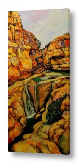 ציורים מים | עין פרת