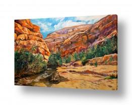 ציורים מים | אביב בנחל פרת