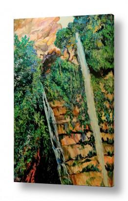 ציורים מים | מפל מים בנחל דוד, עין גדי