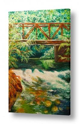 ציורים מים | זרימה בנחל הבניאס