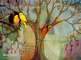 זוג ציפורים-לאהבה וזוג
