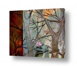 ציורים נעמי פוקס משעול | יער קסום