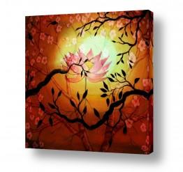 פרחים לוטוס | דימדומי הלוטוס-להתחדשות