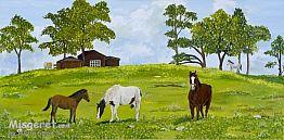 סוסים באחו