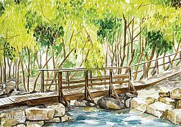 גשר מעל הנחל