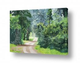 ציורים טבע דומם | שביל ביער