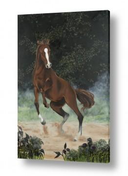 ציורים חדרי ילדים | סוס אנרגטי