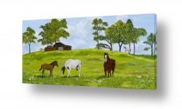 ציורים בעלי חיים | סוסים באחו