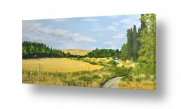 שדות חיטה | טיול בעמק