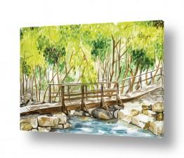ציורים מים | גשר מעל הנחל