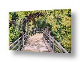תמונות לפי נושאים טיול | גשר אל תוך היער