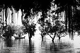 נוף בשחור-לבן