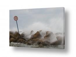 צילומים ניר אלון | שובר הגלים
