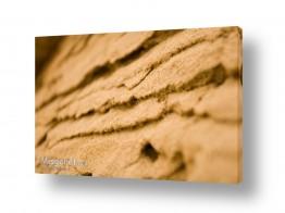 צילומים ניר אלון | מדרגות חול