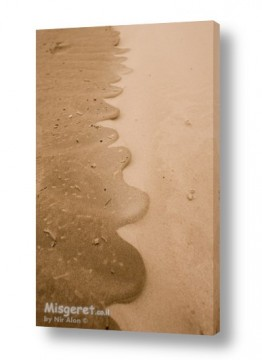 צילומים ניר אלון | קו החוף