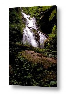 תמונות לפי נושאים רטוב | זורם