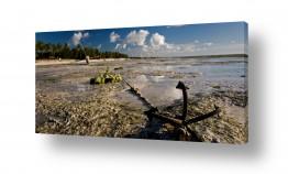 צילומים צילום פנורמי | עוגן