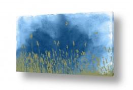 ציורים שמיים | קני סוף ברוח