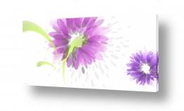 תמונות לחדר נוער | פרחי טיפות
