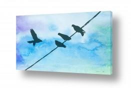 ציורים אמנות דיגיטלית | יונים על תייל תכלת