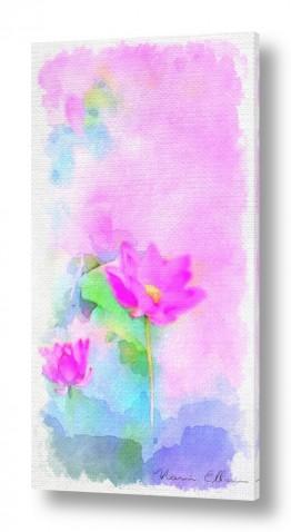 אבסטרקט מופשט אבסטרקט פרחוני ובוטני | פרח יפני