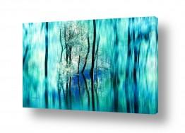 עץ ענף | האגם הסודי