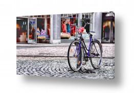 כלי רכב אופניים | סגול מול סגול