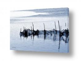 תמונות לפי נושאים רשת דיג | רשתות