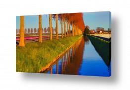 אירופה הולנד | כל הדרכים