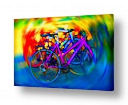 צבעים צבעוניות | בתנועה