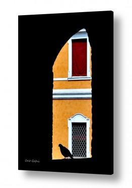 צילומים אורית גפני | הקיר שממול
