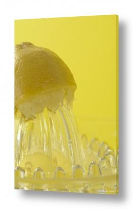 אוכל פירות | לימון 1