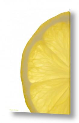 אוכל פירות | לימון 2