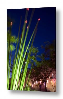 תמונות לפי נושאים לילה | פסטיבל האור