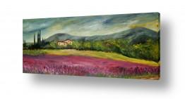 ציורים רוחלה פליישר | שדה פרחים בוורוד