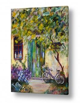ציורים רוחלה פליישר | אופניים בחצר