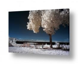 צילומים תמונות נוף | כנרת בלבן