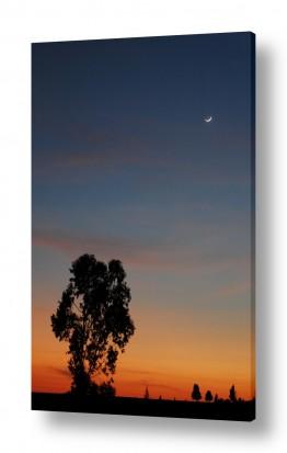 אסטרונומיה ירח | בין ערביים