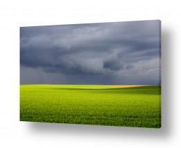 שמים עננים | שדה בסערה