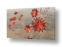 צומח פרחים | פרחי קריסטל
