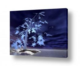 ציורים רעיה גרינברג | כחול