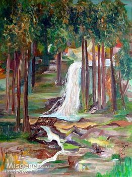 מפל המים
