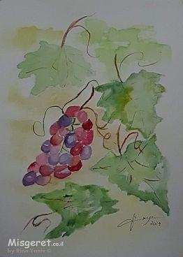 אשכול ענבים