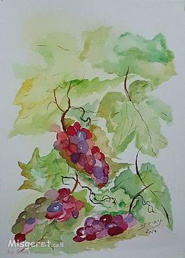 ענבים 2