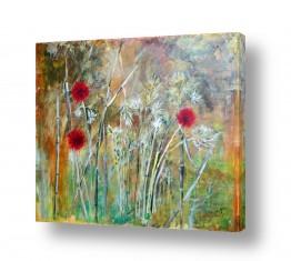 צמחים פרחים | פריחת הקוצים