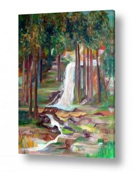 צמחים יער | מפל המים