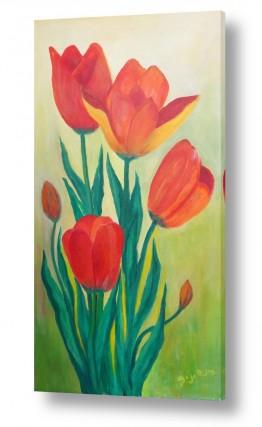 ציורים ציור | צבעונים