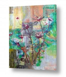פרחים גבעולים | קוצים בשדה